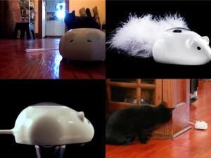 How to sharpen your Cat's Hunting Skills with the AI Robotic Mousr  (1)