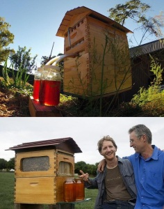 MICO Wars - How the Flow Hive jumpstarts Urban Amateur Beekeeping and Save the Bees - 02-07-2015 LHDEER (2)