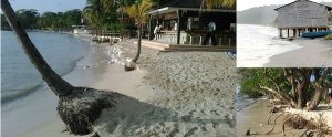 MICO Wars - How all Jamaican Beaches will disappear by 2025 due to Beach Erosion, NEPA and PIOJ - 05-09-2016 LHDEER (2)